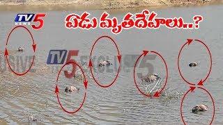 ఒంటిమిట్ట చెరువులో ఏడు మృతదేహాలు... అసలు ఎం జరిగింది..! | Kadapa Dist