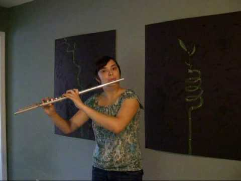 Flute Beatboxing - Pink Panther Music Videos
