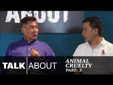 Talkabout - Is Animal Cruelty on the Rise? (Part 3) : Stray Animals and Sterilization