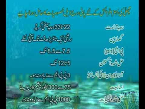 Fish farming Technology part-1 Dr.Ashraf Sahibzada