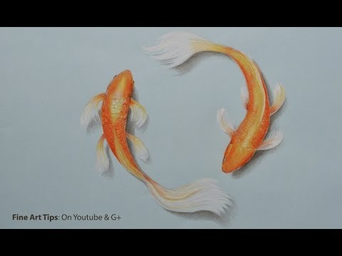 Fishes Pencil Drawing How to Draw Koi Fish With