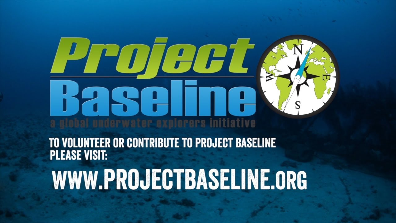 project baseline Project baseline, however, reckons healthy people could provide a wealth of data that could not only help predict if they're going to fall sick, but also be used to delay the onset of disease -- or even avoid it altogetherproject baseline began life in 2017 as a joint research project between verily (the life.