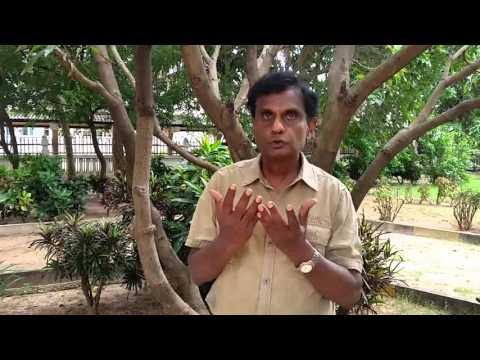 Suicide Prevention in the North of Sri Lanka