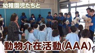 動物介在活動(AAA活動) 〜高松中央高校幼稚園〜