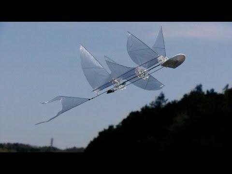 3Dprinted Ornithopter  テスト飛行
