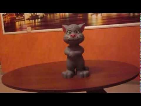 Говорящий кот ТОМ поёт песни, отвечает на вопросы, рассказывает сказки и анекдоты