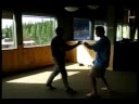 Master Henry Wang Fa Jing #2 7/08