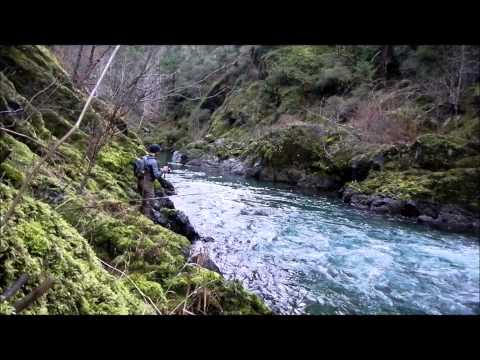 steelhead fishing oregon 2014