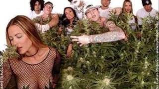 Watch Kottonmouth Kings Rest Of My Life video