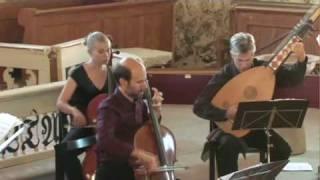 Vivaldi D minor Cello Concerto