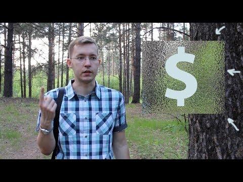 Сколько можно заработать на блоге? ЦИФРЫ И ФАКТЫ!