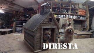 ✔ DIRESTA Old School Dog House