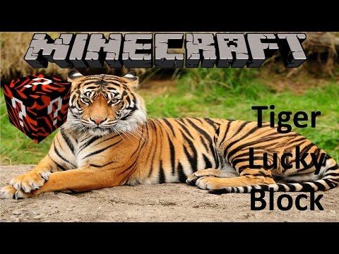 MINECRAFT: TIGER LUCKY BLOCK MOD (1.8.9 MOD SHOWCASE)