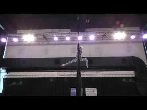Полина Клименченко - Catwalk Dance Fest [pole dance, aerial]  30.04.18.