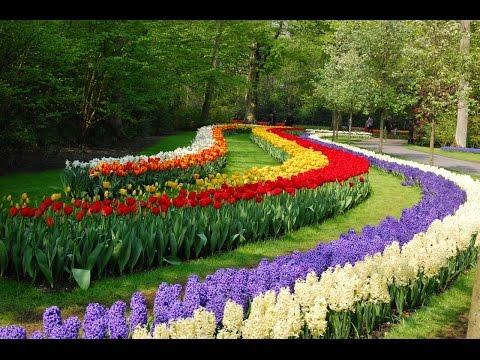 Никитский Ботанический цветущая жемчужина Крыма