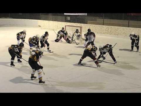 Harlem Shake ( Black Hawks Hockey Edition)