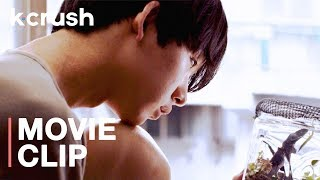 To combat his bullies, he transforms into an insect | M.Boy Short Film | K-Crush Clips
