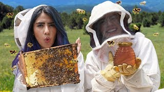 WE HELP 360 THOUSAND BEES | POLLENIOSIOS VLOGS