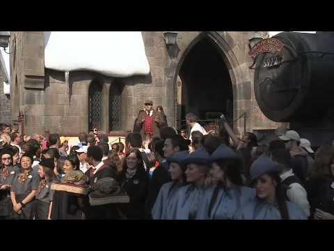 Wizarding World of Harry Potter one year anniversary celebration at Universal Orlando