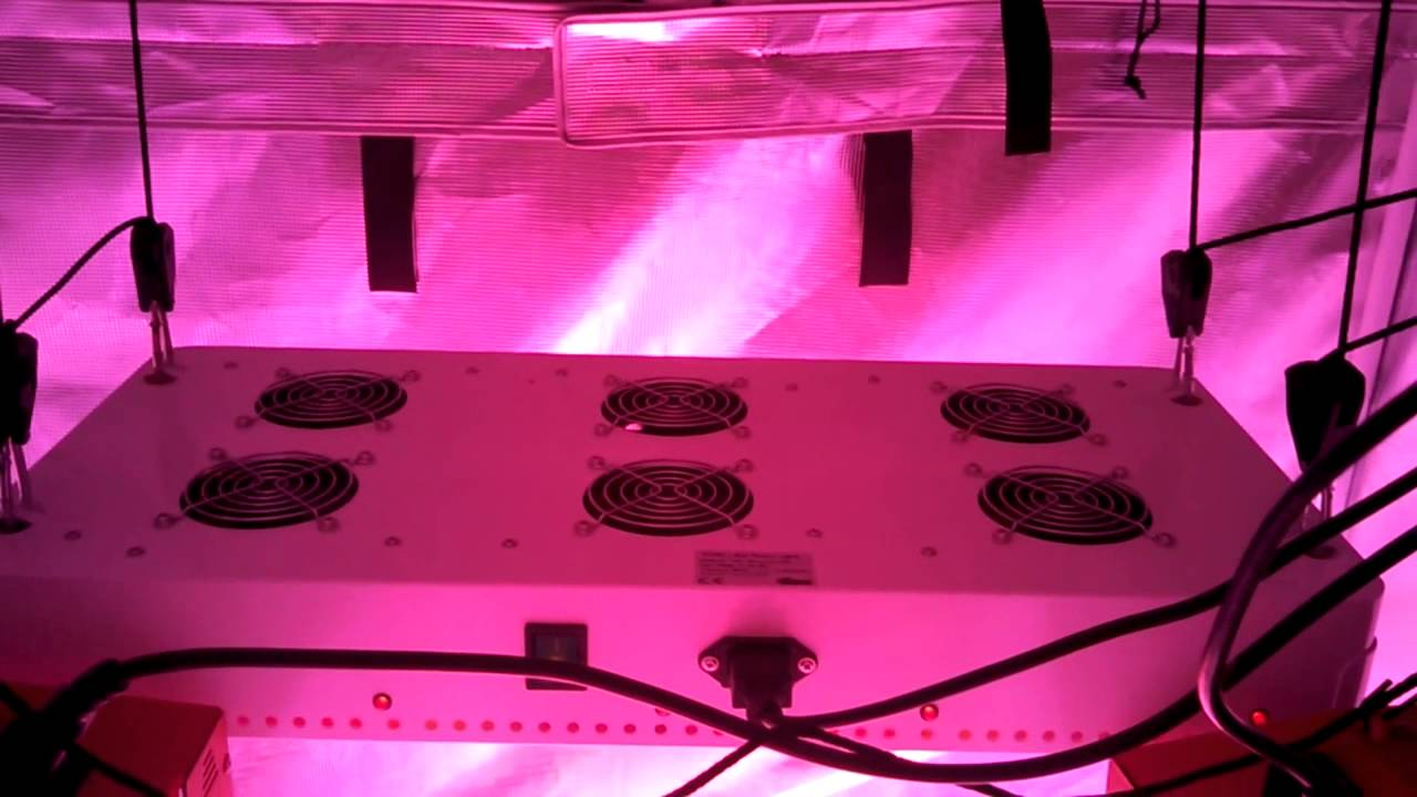 4x4 Grow Gorilla Tent Grow 4x4