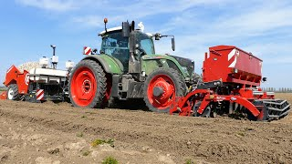 Planting Potatoes | Fendt 724 vario + Miedema CP42 all in one planter | Peperstraten