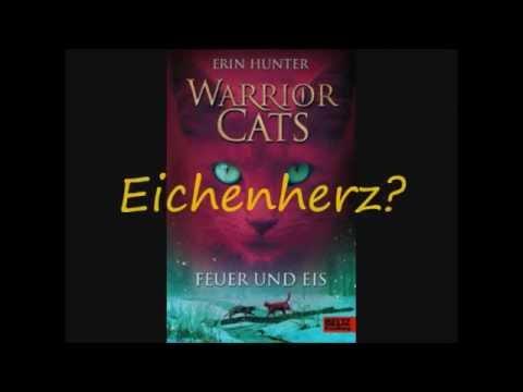 warrior cats katzen