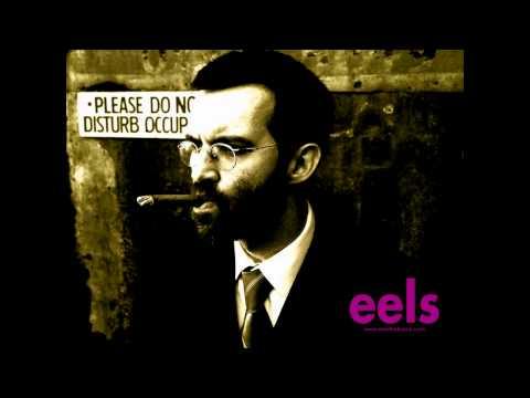 Eels - Last Time We Spoke