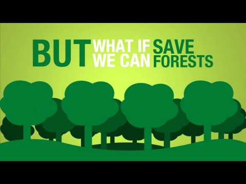 Save trees forests and papers