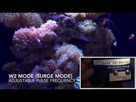 Marineland 37 Gallon Cube Reef: Jebao Wp-10 Review