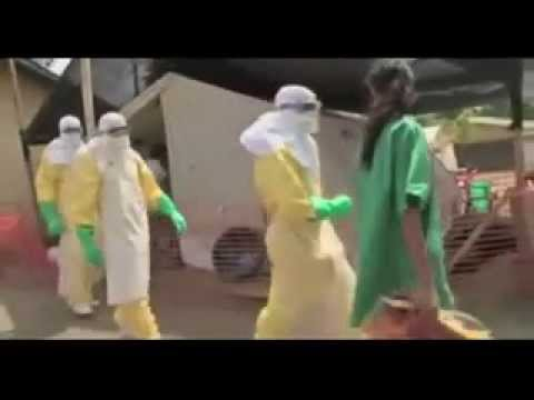 BBC News   Ebola  WHO calls emergency talks on outbreak
