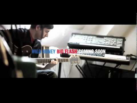 Thumbnail of video Wild Honey - 'Big Flash'