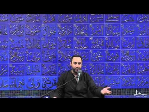10. Islam And The Disabled - Dr. Sayed Ammar Nakshawani - Muharram 1437 - Masjid-e-Ali
