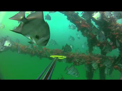 Mississippi Rig Diving and Spearing 4/20/2012
