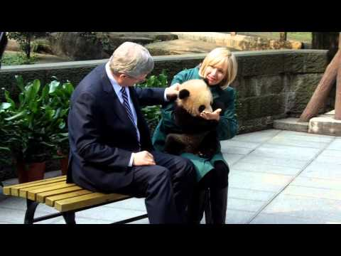Harper with pandas, video by Jason Fekete