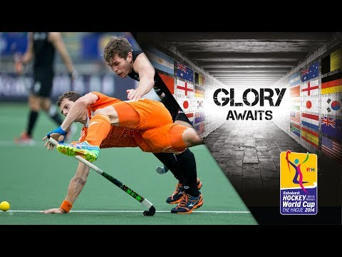 New Zealand vs Netherlands - Men's Rabobank Hockey World Cup 2014 Hague Pool B [10/6/2014]