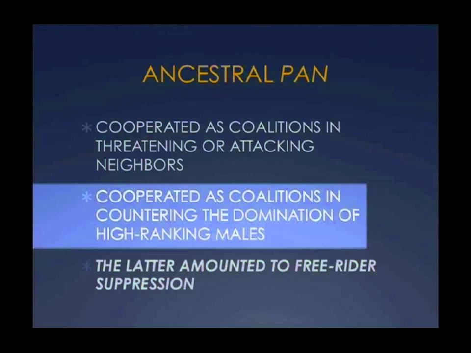 CARTA:Altruism-Social Selection vs. the Notorious Free Rider - YouTube