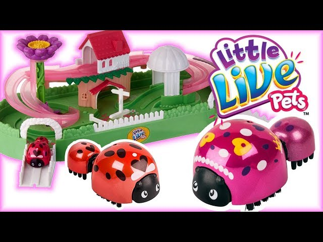 Little Live Pets • Biedronka i biedroneczka • Domek i ogród dla Biedronki • openbox
