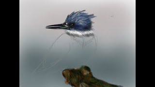 Kingfisher start of an illustration, by Doz 4 19 2019