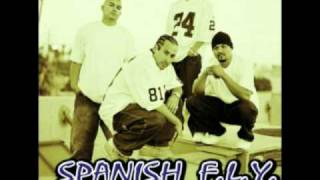 Watch Spanish Fly Burning Down The House video