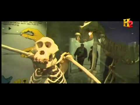 Reports of a Huge Species of Extinct Apes Documentary in english part 3