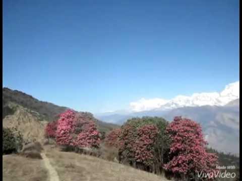kathmandu chhutyo herda herdai