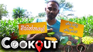 The Cookout    ( 09 - 01 - 2021 )