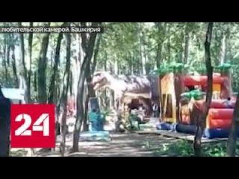 В Башкирии 8-летний мальчик сломал позвоночник в парке развлечений - Россия 24