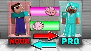 Minecraft NOOB vs PRO : BRAIN EXCHANGE! NOOB BECAME a PRO in Minecraft! Animation!