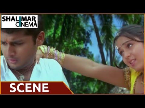Sri Anjaneyam Movie    Charmi Kaur Removing Saree Before Nithin Scene video