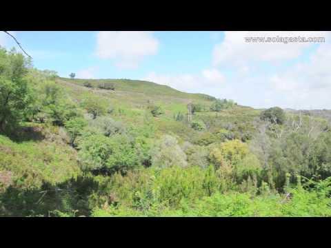 Percurso Amarelo Percurso da Boavista Tapada Nacional de Mafra Mafra