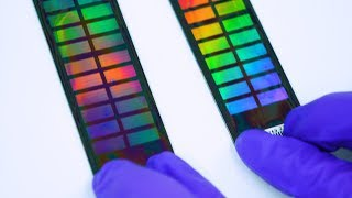 DNA Testing and Privacy (Behind the scenes at the 23andMe Lab) - Smarter Every Day 176