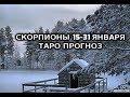 Скорпионы 15 31 Января Таро Прогноз