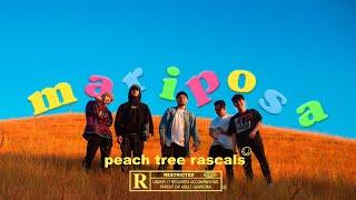 Download lagu Peach Tree Rascals - Mariposa