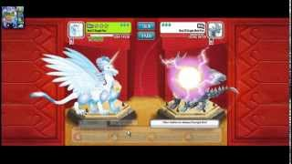 combat de dragon city copa diamamte lvl 6 (loquendo)